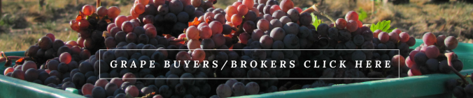 Grape Buyers and brokers click here